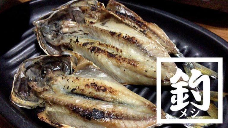 釣りあげた鯖(サバ)で一夜干し!朝起きたら完成の絶品簡単干物