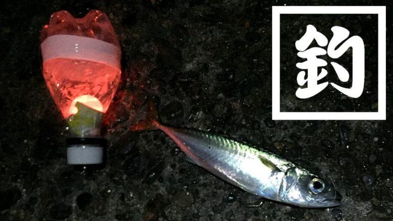 自作電気ウキで堤防夜釣り!手作りウキでもサバとアジが釣れたよ!