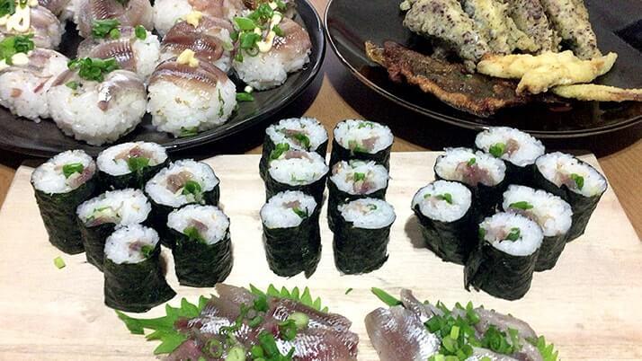 釣ったウルメイワシで手毬寿司に巻き寿司!刺身に天ぷらもつけたフルコース!