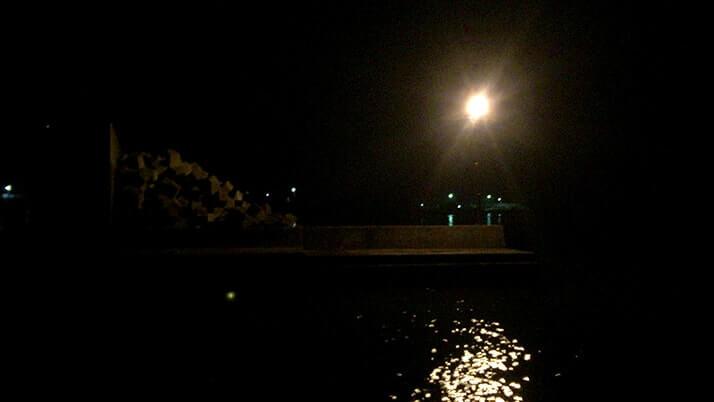 マダコが釣れた!千葉内房堤防でエギにイワシを巻いてタコ釣り