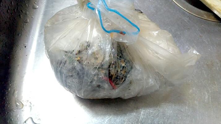 魚の内臓の処理方法!袋に入れて冷凍すれば臭くない!