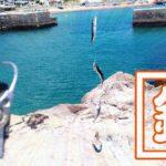 釣りたて小サバ・イワシの絶品フライ!千葉内房堤防で釣った魚を食す