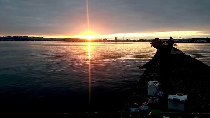 千葉館山自衛隊堤防釣り!釣れる魚種(外道)は豊富も本命ならずの五目釣り