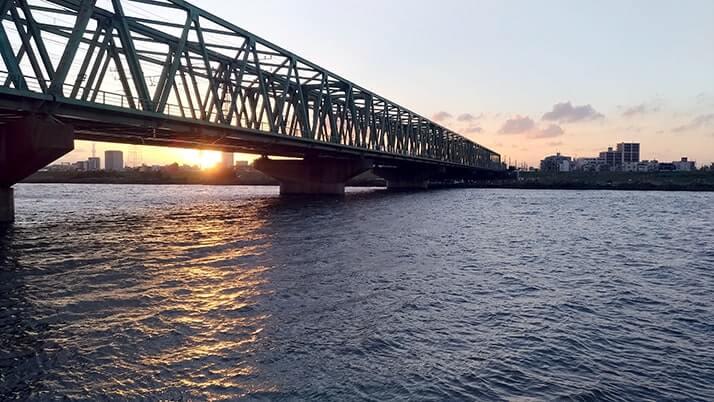 江戸川でウナギ釣り!シーバス・ニゴイ・ギギ…念願のウナギGET!!