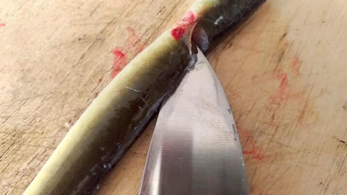 釣ったウナギを捌いて蒲焼→ひつまぶしにしたら激ウマ!【江戸川産】