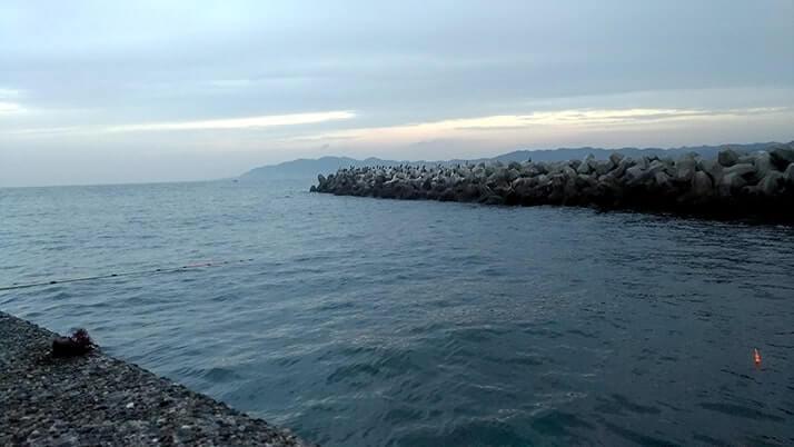 真冬の館山で長潮堤防夜釣り!ムラソイにドンコ…フグ猛襲?