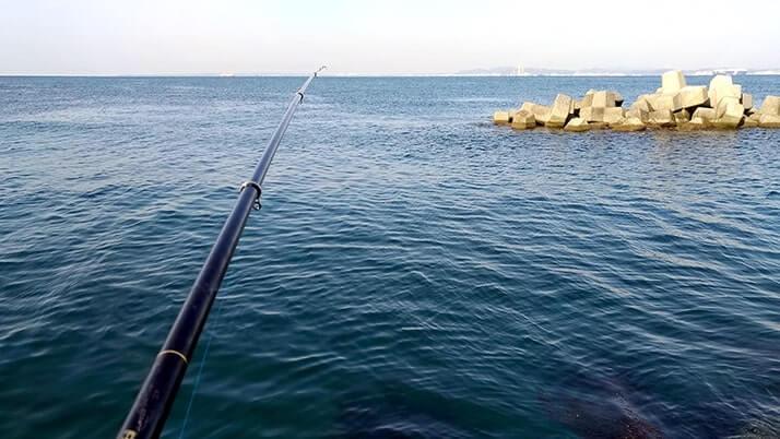 初フカセ釣りでチヌ(黒鯛)!冬の千葉内房堤防で本命GET