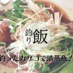 ダイワ(Daiwa) のバッカンとロングキャスターライト|釣具レビュー
