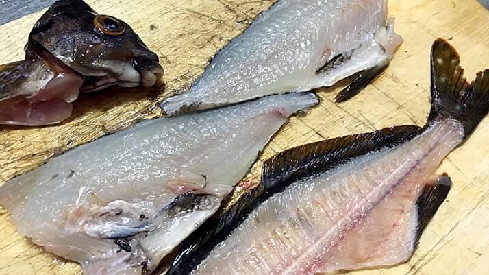 ドンコ鍋とタカノハダイのしゃぶしゃぶとメバルの刺身|釣り飯