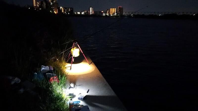 江戸川五目釣り!ぶっこみでウナギ・シーバス・ギギ!テナガエビも