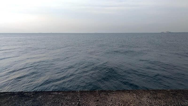木更津沖堤防で釣り!アナゴ・ワカシ・イシモチ…etcの五目釣り