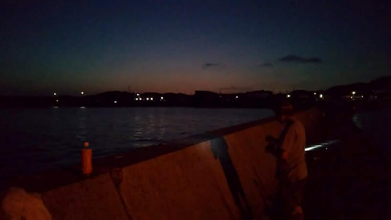 イサキが釣れるも渋い…が暑い夏は夜釣り!千葉館山堤防釣り