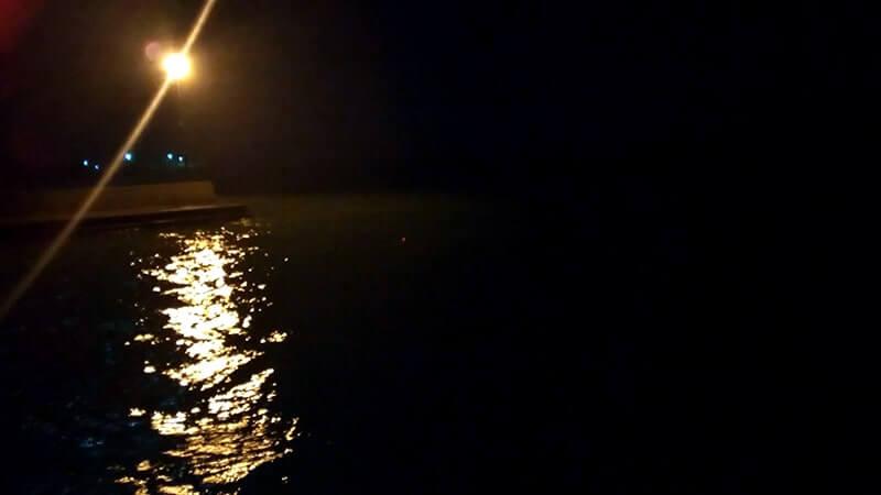 夏の夜釣りでイサキがツ抜け一歩手前!千葉館山堤防釣り