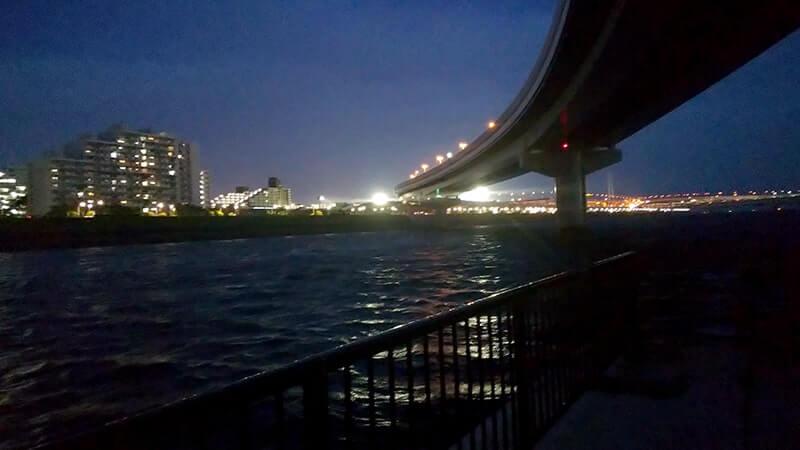 シーバス釣り|荒川・中川の中洲を上流へ…シーバス狙いでニゴイも