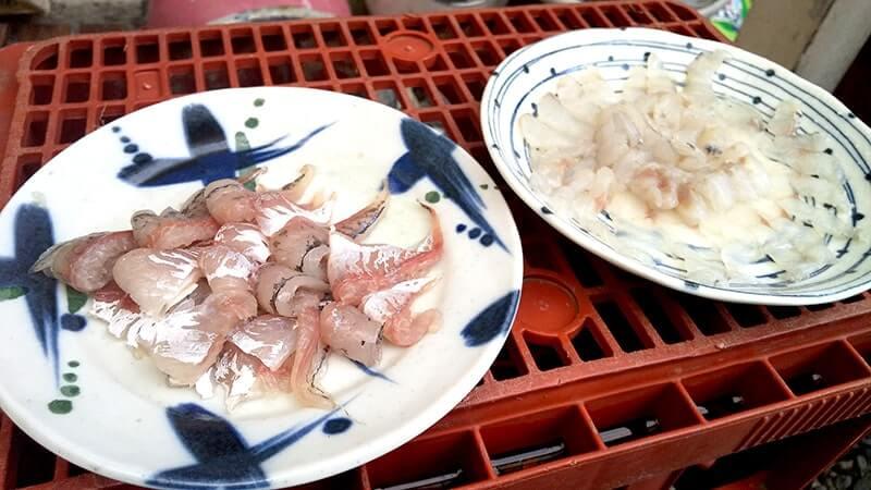 ホタテウミヘビは食には向かず!が、煮こごりはなかなかいけますよ【釣り飯】