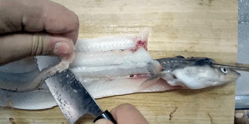釣ったマアナゴをボリューム満点穴子天丼に!冬のアナゴは脂のノリが良い!!