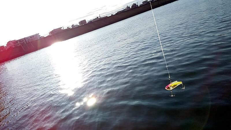 釣り初めはセイゴシーバス…1月初め冬の湾奥中川釣り