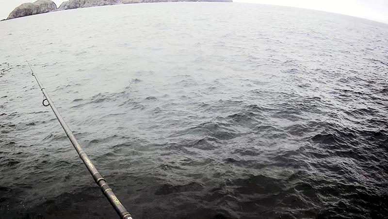 新島遠征最終日!出船までのルアー釣りでショゴ(カンパチ)GET|新島釣りキャンプ第二弾【DAY8】