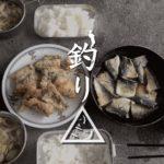 新島港でデッカワハギ!タカノハダイ・ハタンポと戯れる餌釣り|新島釣りキャンプ第二弾【DAY5 後半】