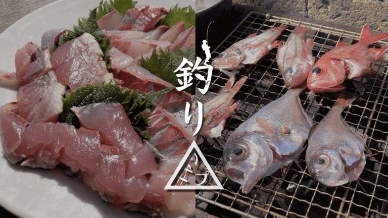 釣りたてカンパチの刺身とサバの塩焼きで釣りキャンプ飯BBQ!|新島釣りキャンプ第二弾【DAY3 ランチ】