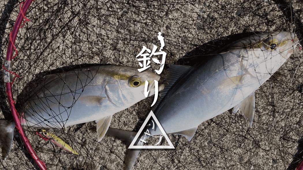 ジグサビキでショゴ(カンパチ)とサバがダブルHIT!|新島釣りキャンプ第二弾【DAY3 前半】