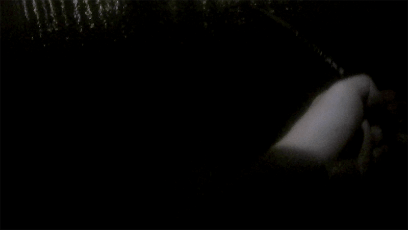 シーバスに年無しチヌ!東京河川で夏の夜な夜なルアー釣り【東京湾奥ルアー釣り】