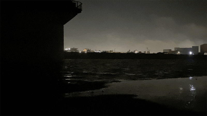 45cmクロダイ!中川ナイトゲームでチヌとシーバス【東京湾奥ルアー釣り】