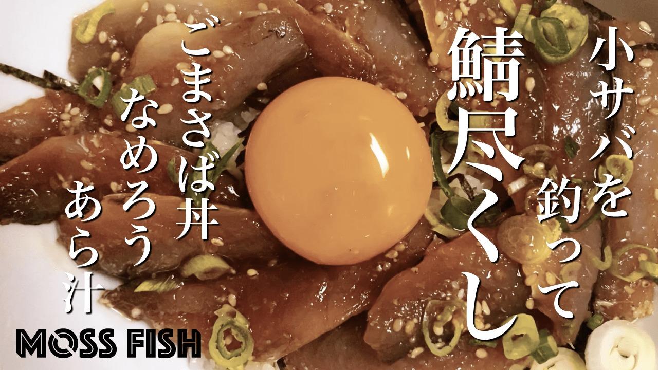 小サバを釣って「ごまさば丼」に!千葉海釣りで釣ったサバで釣り飯