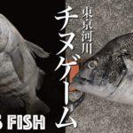 "<span class=""title"">東京湾奥河川チヌゲーム!ワームで黒鯛を狙う夏夜のルアー釣り</span>"