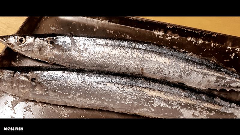炭火焼き鳥&旬のサンマ塩焼きで日本酒!〆はラーメンのベランダBBQ|家でキャンプごはん
