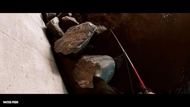 東京旧中川でマハゼ釣り!11月晩秋の良型ハゼを絶品天ぷらに