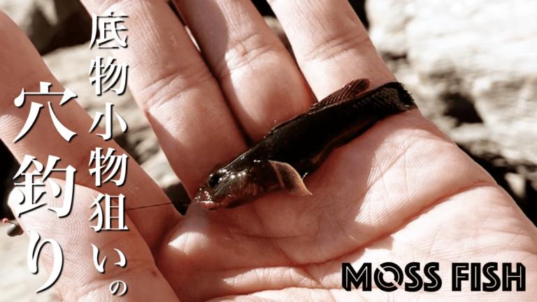 タナゴ仕掛けで底物の小物を釣る!旧中川11月下旬晩秋小物釣り