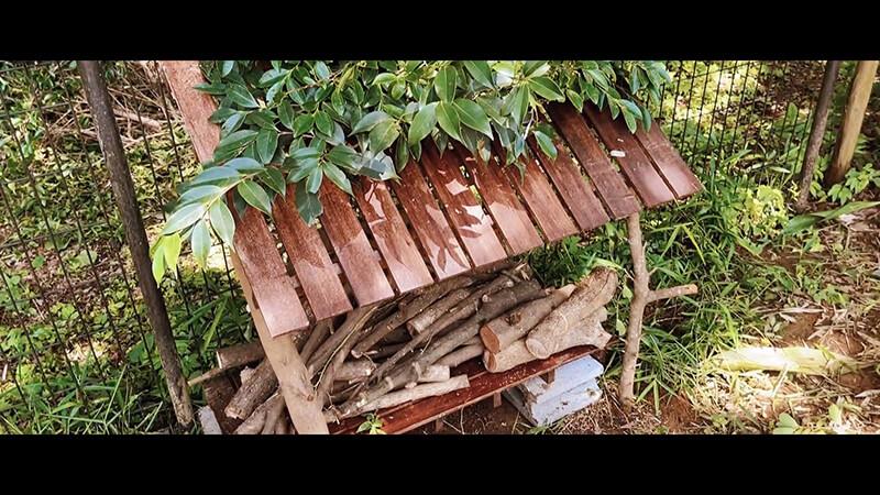 梅雨時期の雨の日を楽しく過ごす|ハーブティー・天然酵母・焚き木作り