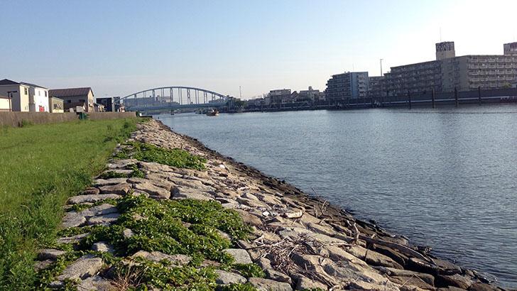 旧江戸川での釣りから中滝アートヴィレッジまで!千葉で過ごしたいい時間