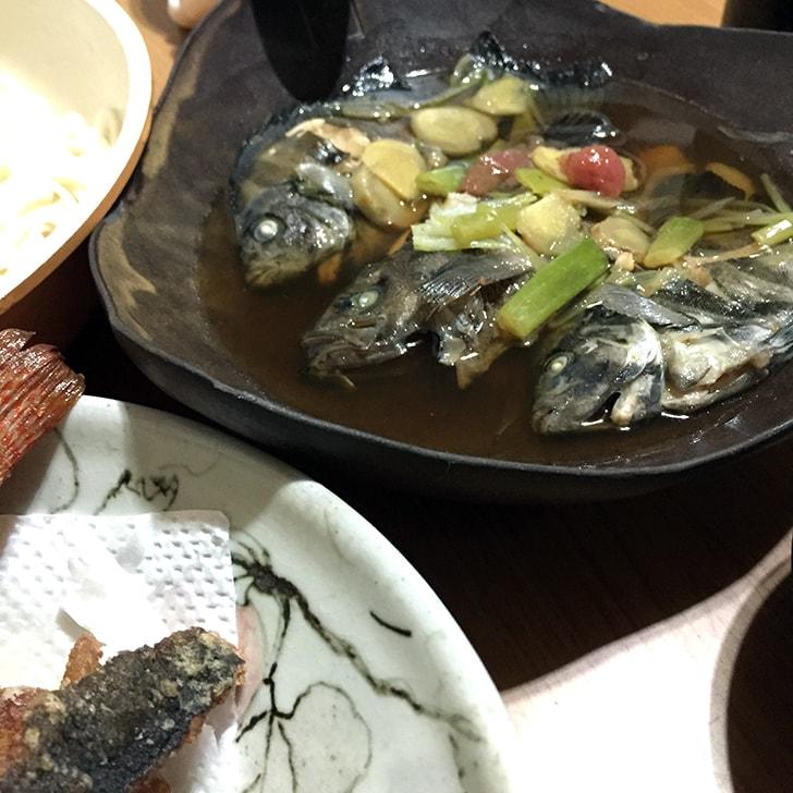 釣り2本立て!旧江戸川シーバスルアー釣り→千葉内房五目釣り