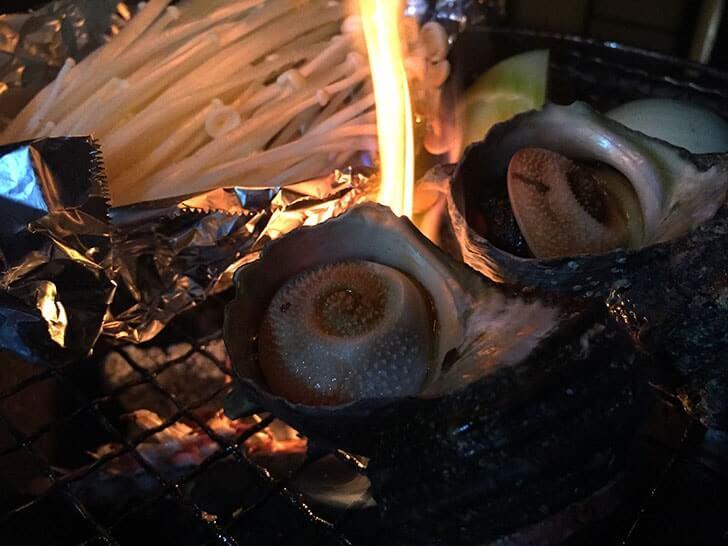 活きさざえGET!七輪で焼いて醤油をたらしたつぼ焼き…んまい!